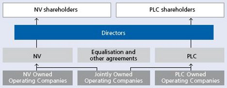 corporate company ownership structure document